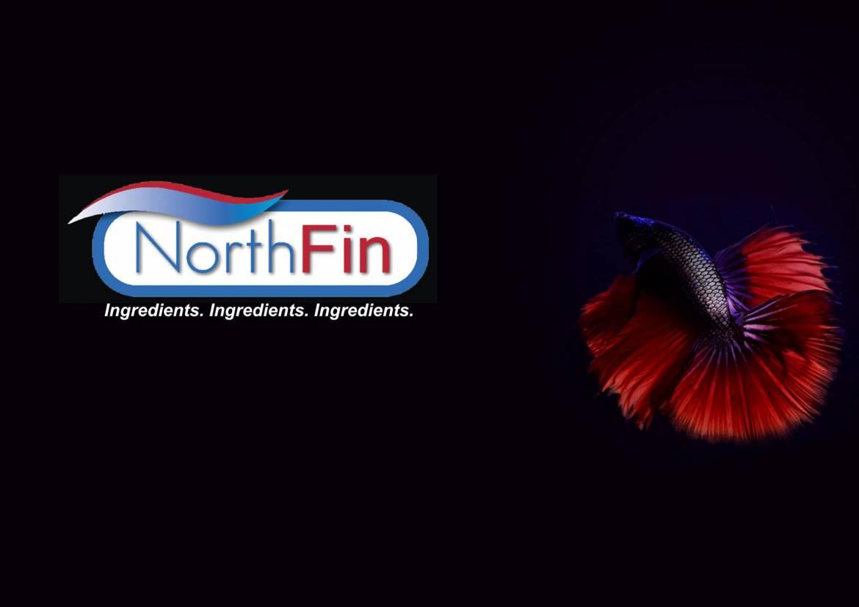 Northfin20.jpg